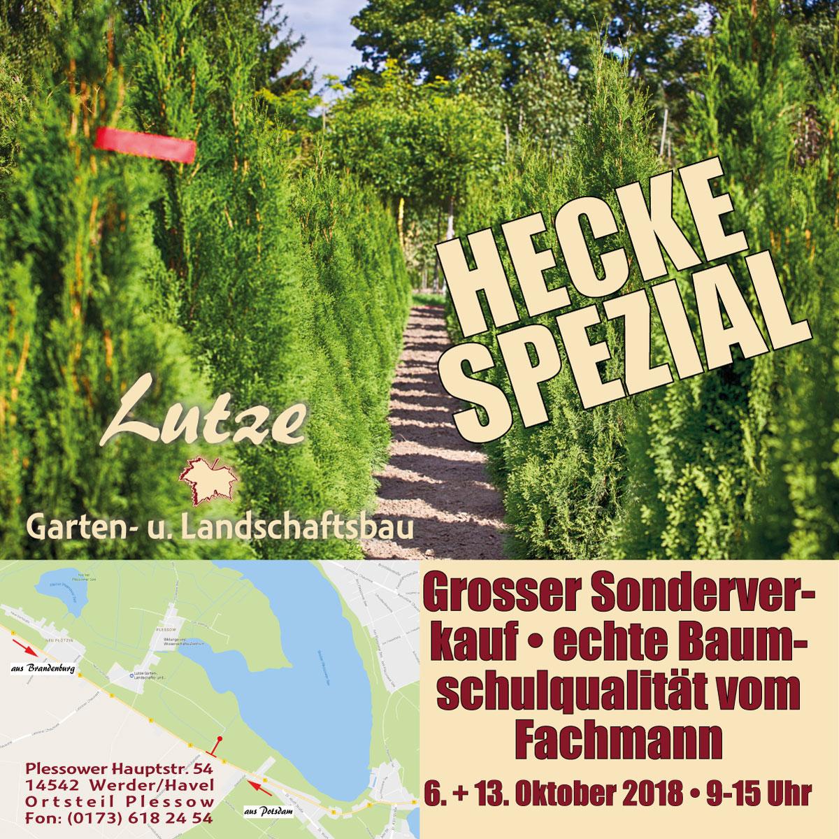 Garten Und Landschaftsbau Wirth Gbr Landschaftsgärtner: Hecke Spezial Bei Lutze Garten- Und Landschaftsbau